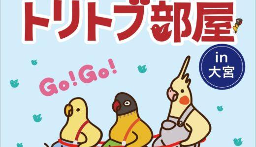 トリトブ部屋 in 大宮(2019/5/18-6/30)