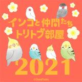 インコと仲間たち トリトブ部屋2021(2021/1/6-24)