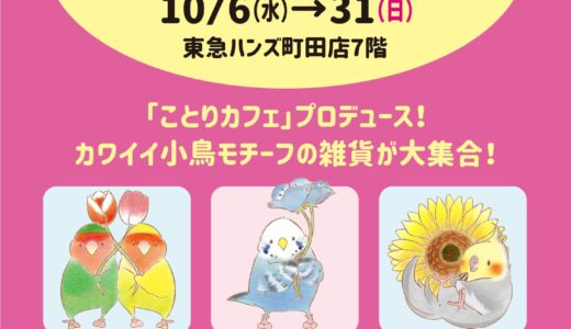 ことりマルシェ in  MACHIDA 於東急ハンズ町田(2021/10/06)